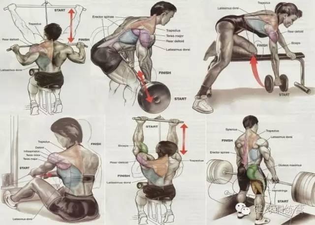 腿部训练动作