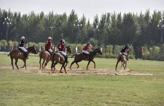 去看一场穿越千年的马背球赛