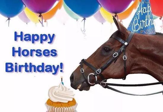 马也过生日