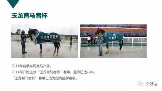"""中国赛马之""""玉龙模式""""研究:玉龙马业十年投_今天黄金价格多少一克"""