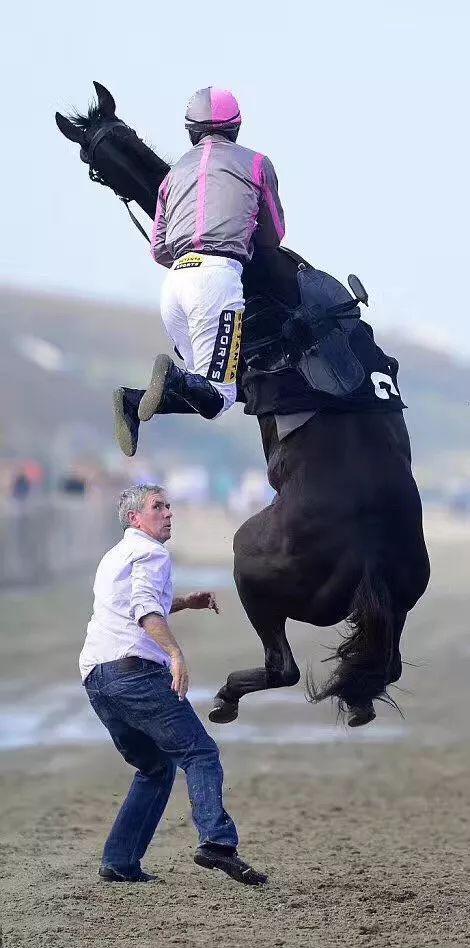 为了安全!骑马的八项注意