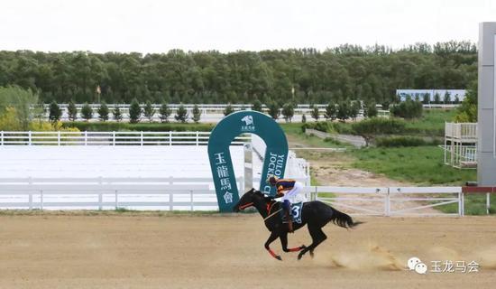 2019玉龙国际赛马公开赛第5赛事日赛事战报