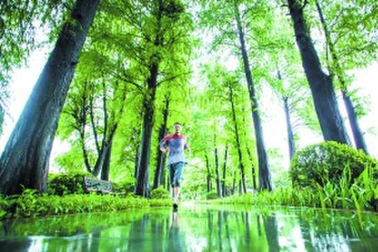 市民在流花湖公园跑步。