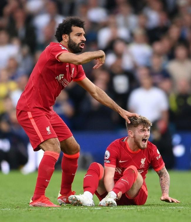 利物浦小将脚踝重伤剧烈扭曲 转播不回放肇事者吓傻|GIF